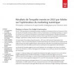 résultats de l'enquête 2013 Adobe